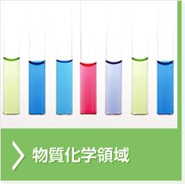 物質化学領域